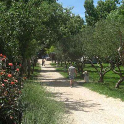 Camping Kroatien Norddalmatien